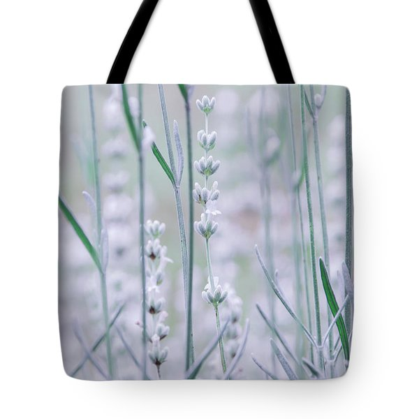 Tote Bag featuring the photograph White Lavender  by Andrea Anderegg