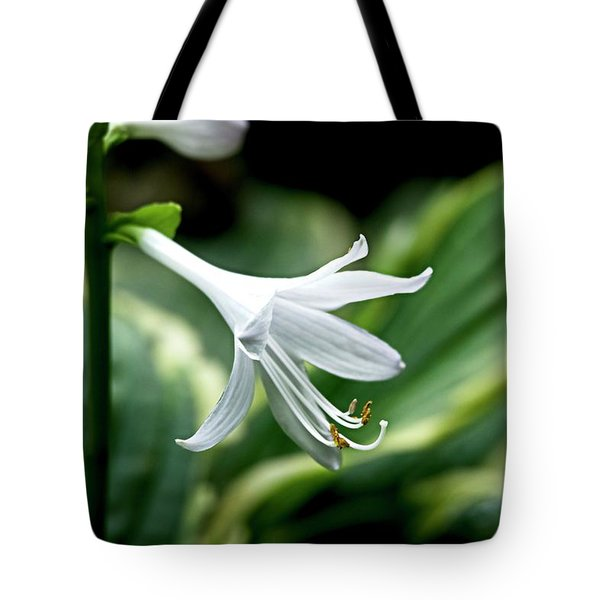 White Lily 1 Tote Bag