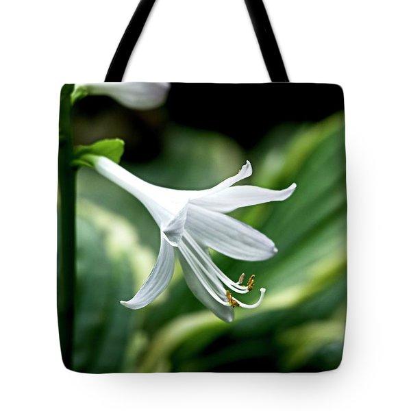 White Lily 1 Tote Bag