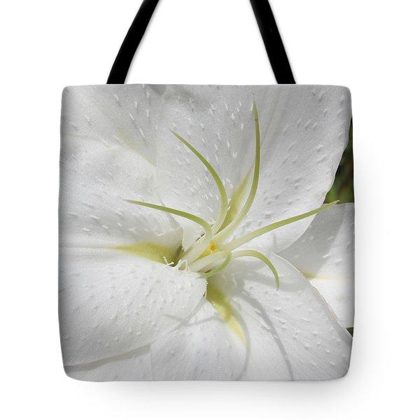 White Lily Tote Bag by Lynne Guimond Sabean