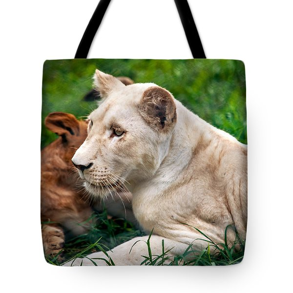 White Lion Cub Tote Bag by Jenny Rainbow