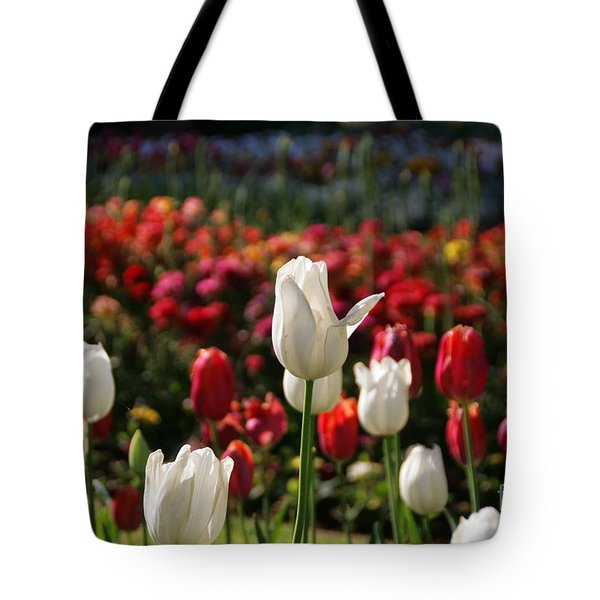 White Lit Tulips Tote Bag