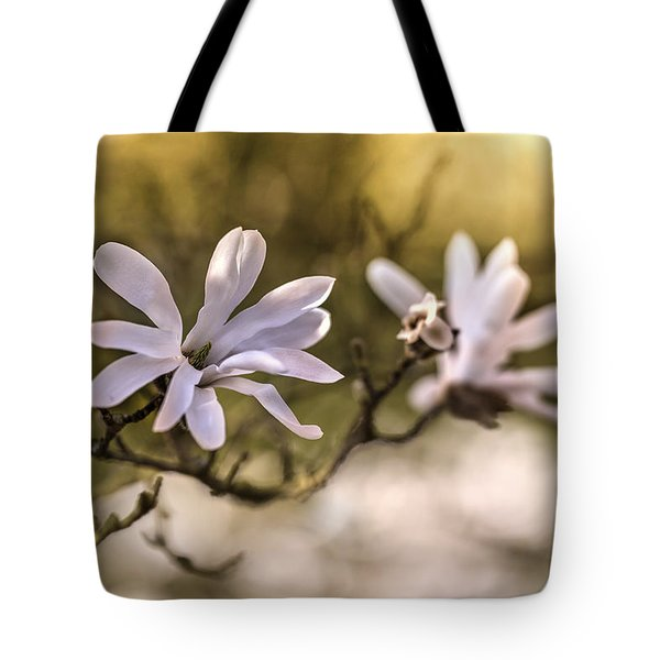 Tote Bag featuring the photograph White Magnolia by Jaroslaw Blaminsky
