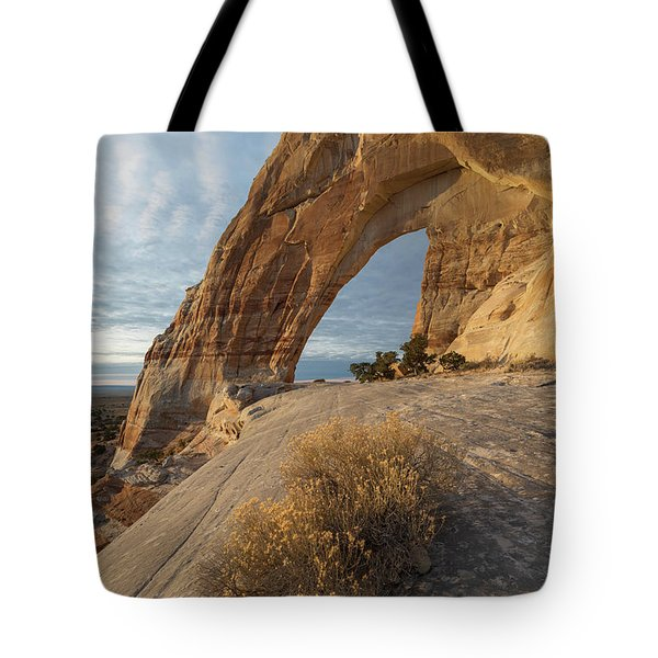 Tote Bag featuring the photograph White Mesa Arch by Dustin LeFevre
