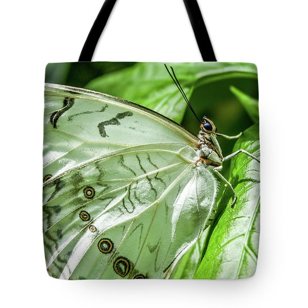 Tote Bag featuring the photograph White Morpho Butterfly by Joann Copeland-Paul