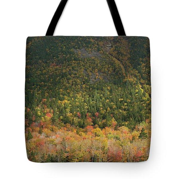 White Mountain Tote Bag