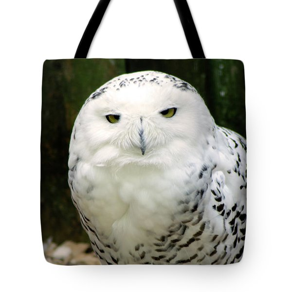 White Owl Tote Bag by Rainer Kersten