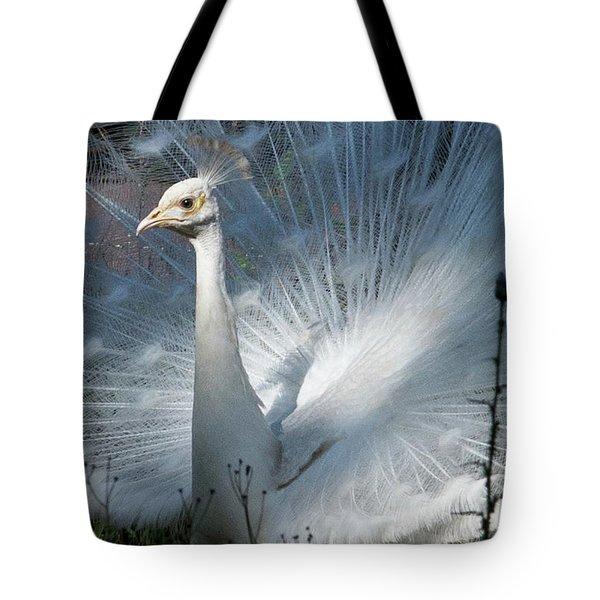 White Peacock Tote Bag by Lamarre Labadie