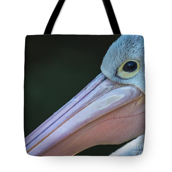White Pelican Close Up Tote Bag by Avalon Fine Art Photography