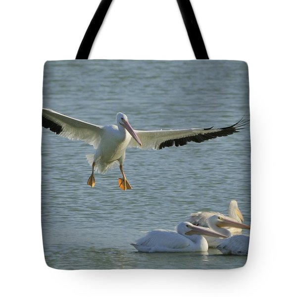 Tote Bag featuring the photograph White Pelican Landing by Bradford Martin