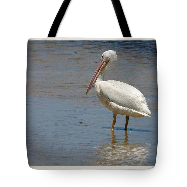 Tote Bag featuring the photograph White Pelican by Melinda Saminski
