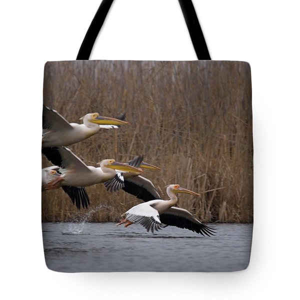 White Pelicans In Flight Over Lake Tote Bag