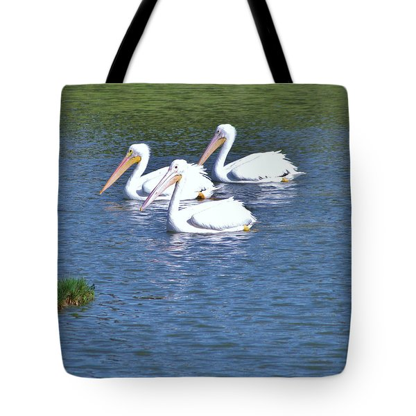Tote Bag featuring the photograph White Pelicans by Martha Ayotte