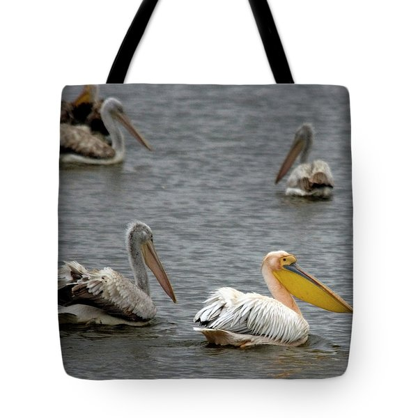 White Pelicans On Lake  Tote Bag