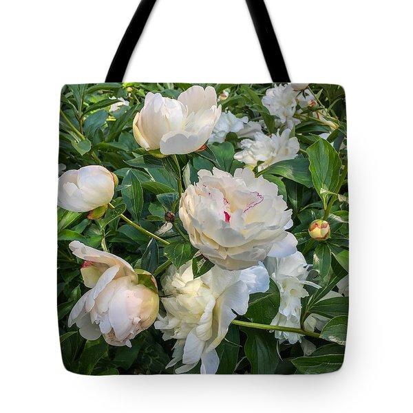 White Peonies In North Carolina Tote Bag