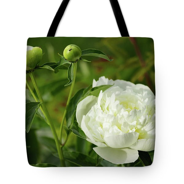 Tote Bag featuring the photograph White Peony by Cristina Stefan