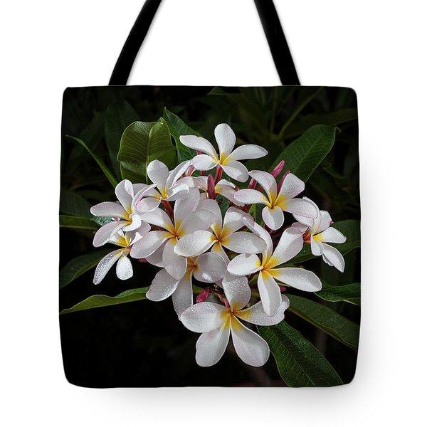 White Plumerias In Bloom Tote Bag