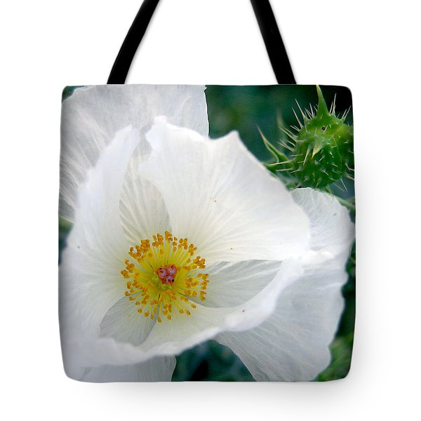 White Prickly Poppy Tote Bag