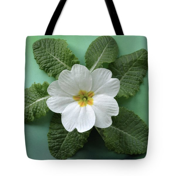 Tote Bag featuring the photograph White Primrose by Terence Davis