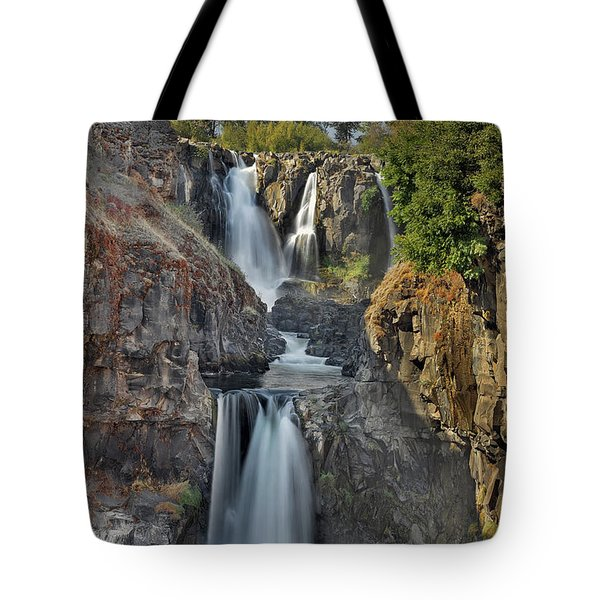 White River Falls State Park Tote Bag by David Gn