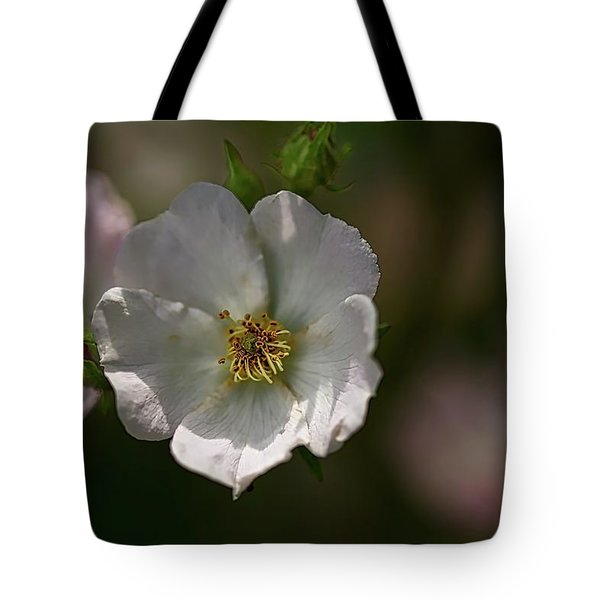 White Rose In Shadow Tote Bag