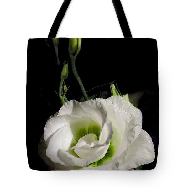White Rose On Black Tote Bag