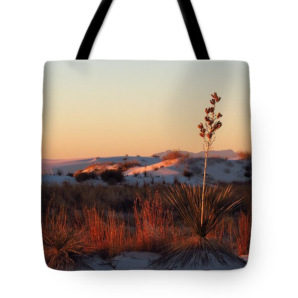 White Sands Dawn #14 Tote Bag by Cindy McIntyre