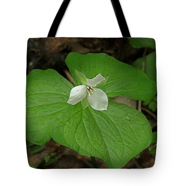 Tote Bag featuring the photograph White Spring Trillium by Mike Eingle