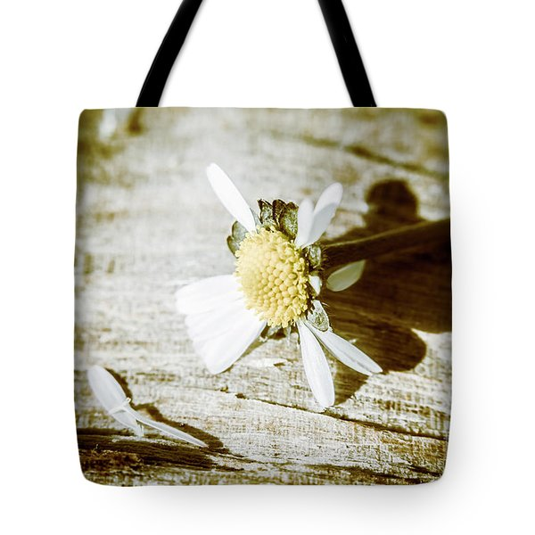 White Summer Daisy Denuded Of Its Petals Tote Bag