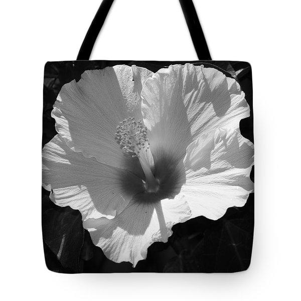White Sunshine Tote Bag