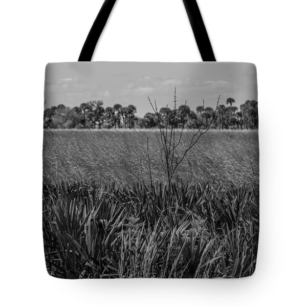 White Tail Deer Tote Bag
