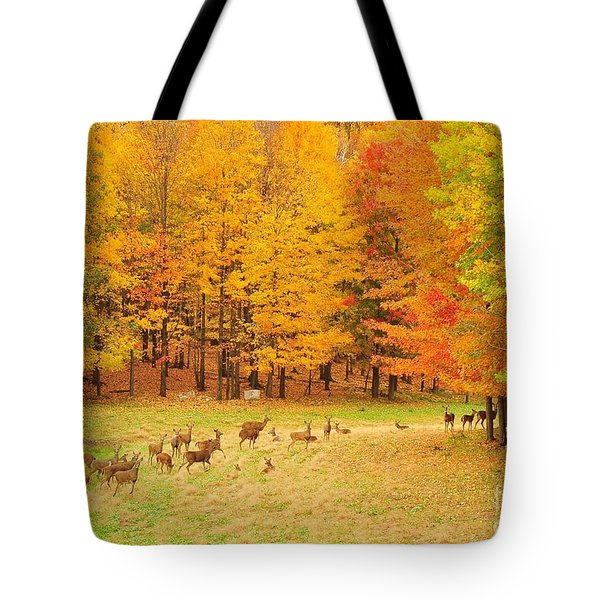 White Tail Deer Herd Tote Bag by Terri Gostola