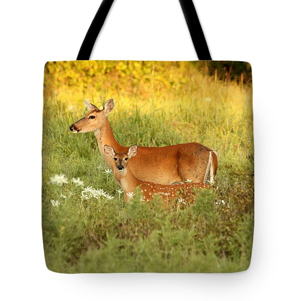 White-tail Doe And Fawn In Meadow Tote Bag