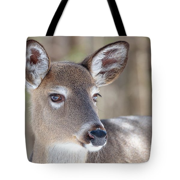 Tote Bag featuring the photograph White-tailed Deer - Cerf De Virginie by Nature and Wildlife Photography