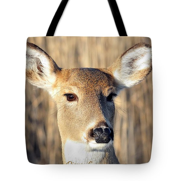 White-tailed Deer Tote Bag by Diane Giurco