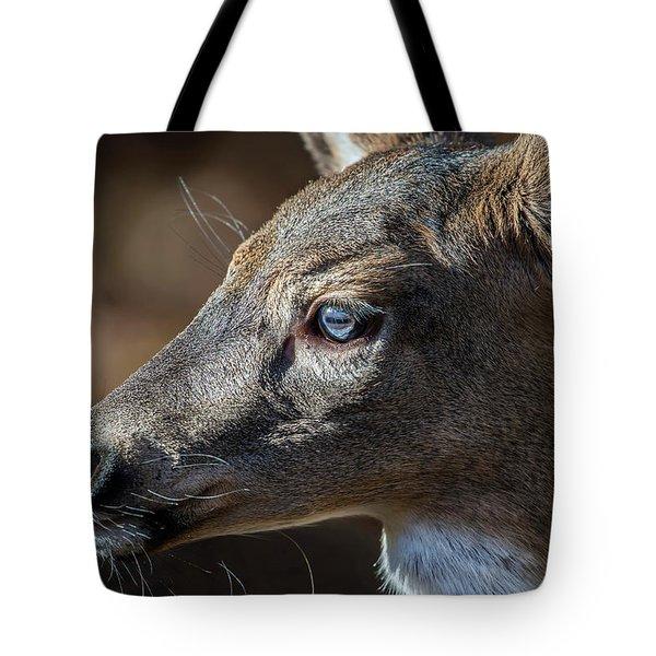 White Tailed Deer Facial Profile Closeup Portrait Tote Bag