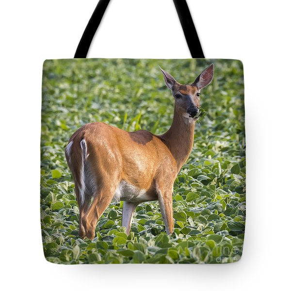 Tote Bag featuring the photograph White-tailed Deer by Ricky L Jones