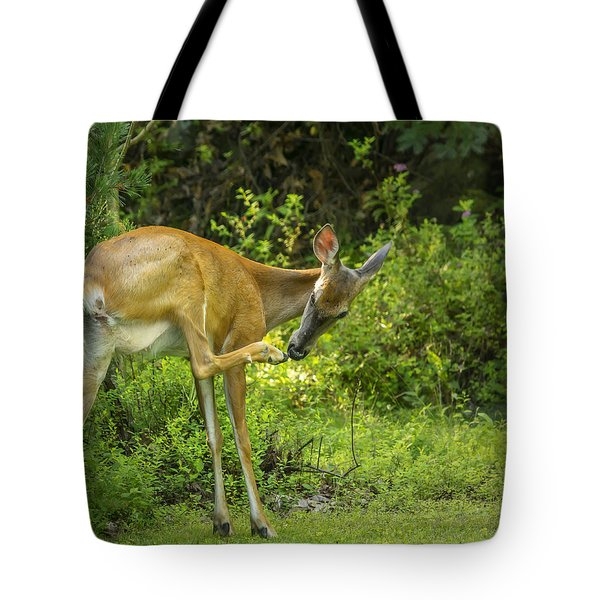White Tailed Deer Scratching It's Nose Tote Bag by Ken Morris