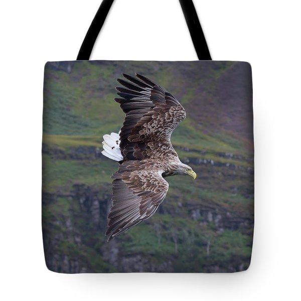 White-tailed Eagle Banks Tote Bag