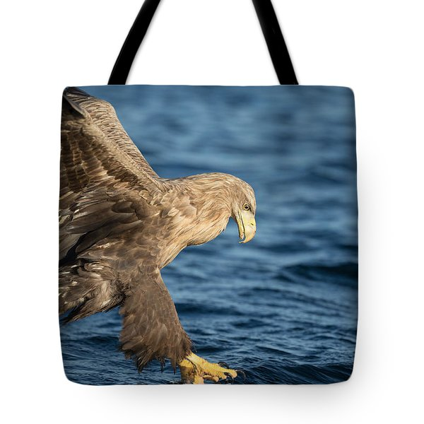 White-tailed Eagle Hunting Tote Bag