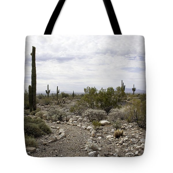 White Tank Mountain Regional Park Tote Bag by Anne Rodkin