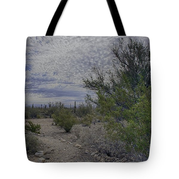 Tote Bag featuring the photograph White Tanks Mountain Regional Park by Anne Rodkin
