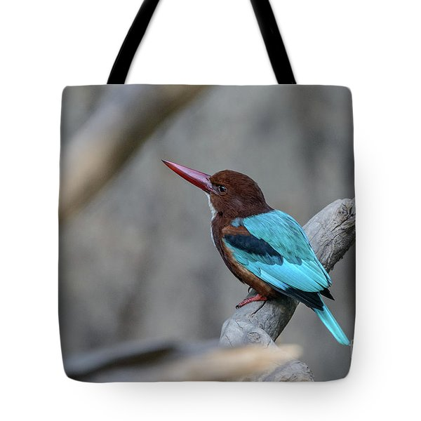White-throated Kingfisher 02 Tote Bag