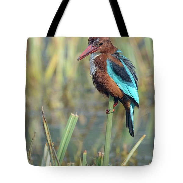 White-throated Kingfisher 13 Tote Bag