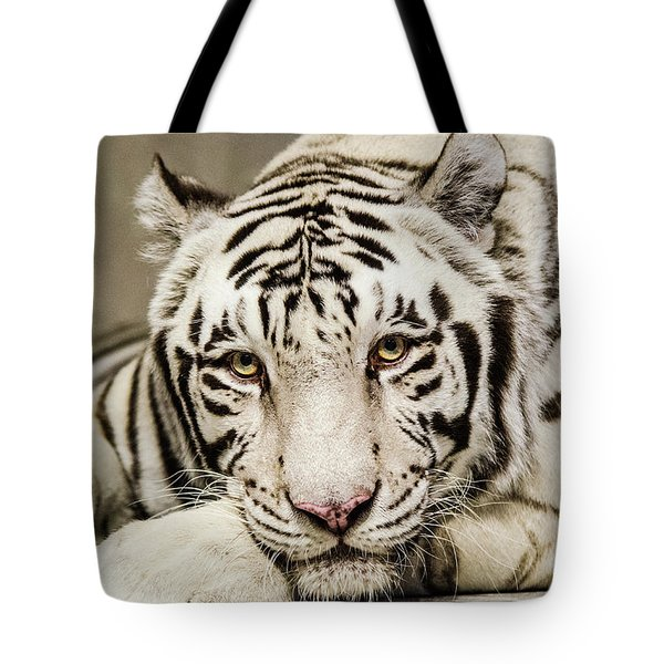 White Tiger Looking At You Tote Bag