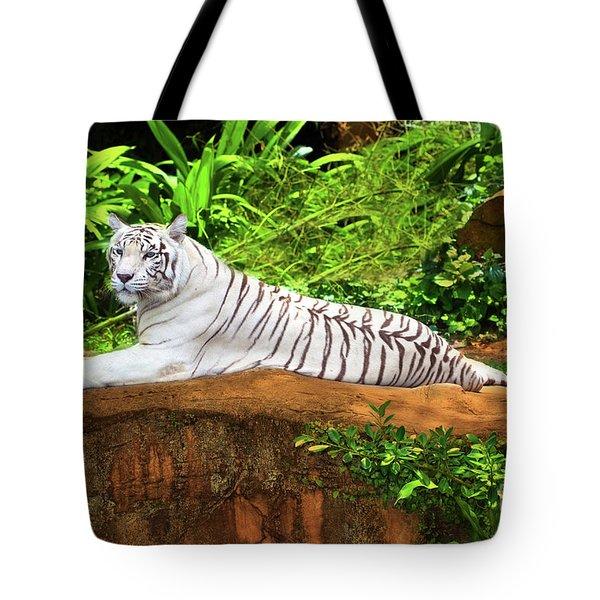 White Tiger Tote Bag by MotHaiBaPhoto Prints