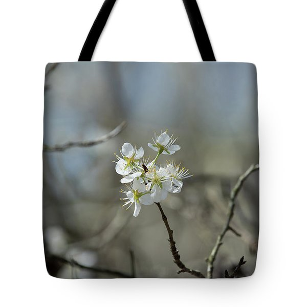White Tree Bud Tote Bag