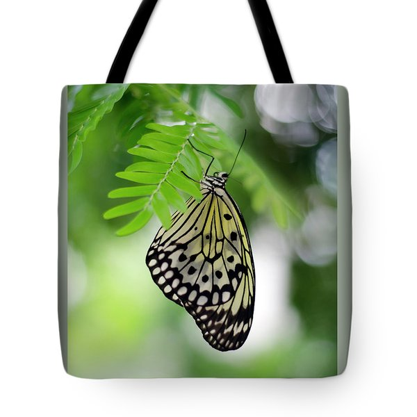White Tree Nymph Butterfly 2 Tote Bag by Marie Hicks