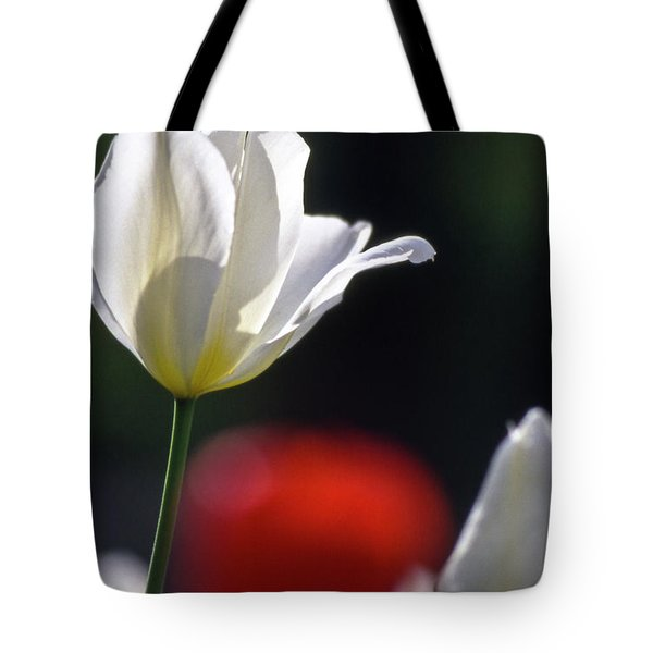 White Tulips  Blossom Tote Bag by Heiko Koehrer-Wagner