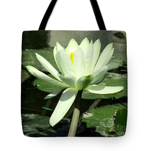 Tote Bag featuring the photograph White Water Lily 1 by Randall Weidner